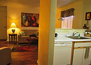 Standard Kitchen - Living Room